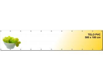 TELO PVC 100X500CM